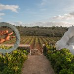 the winemaker experience_01