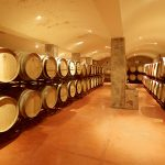 the winemaker experience_02