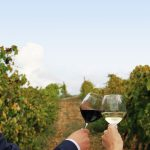 the winemaker experience_14